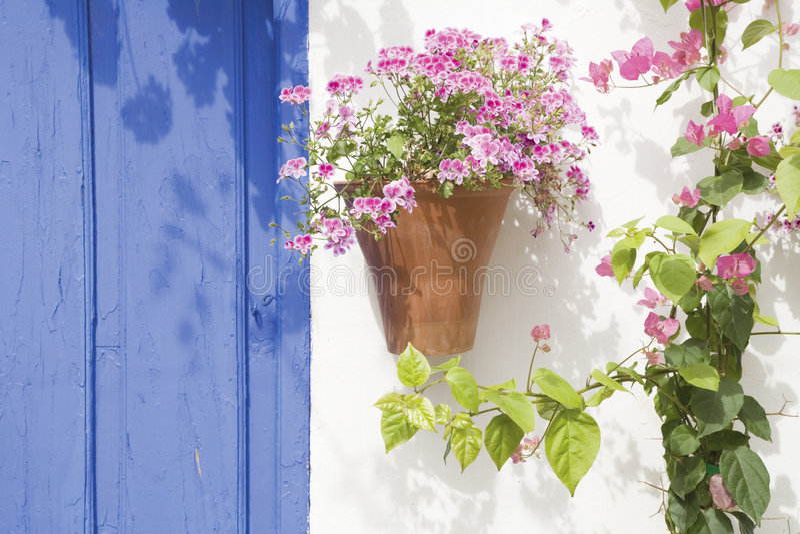 Spanish flowers stock images