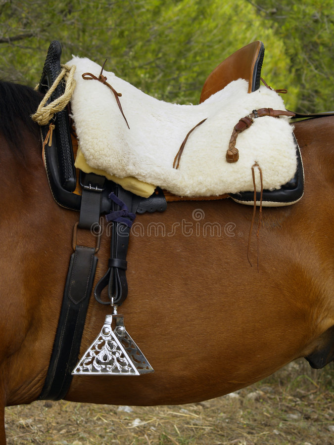 Spanish saddlery. A traditional Spanish saddle and decorative silver stirrups on a bay horse stock photos