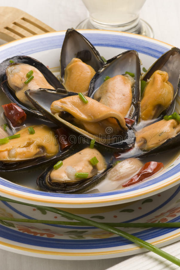 Spanish tapas. Mussels in whine sauce. royalty free stock photography