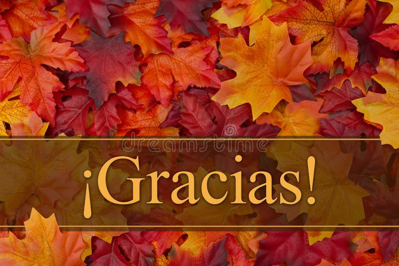 Spanish Thank You Greeting with fall leaves. Spanish Thank You Greeting, Some fall leaves with text Gracias stock illustration