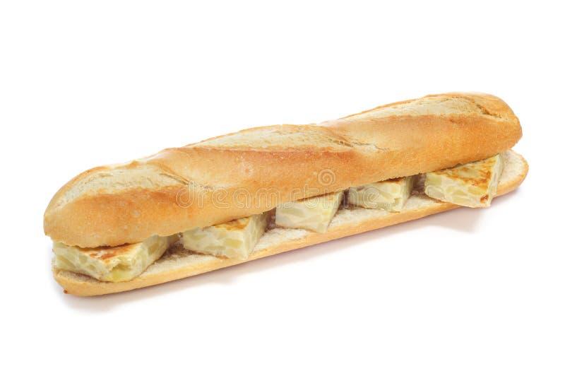 Spanish tortilla de patatas sandwich stock photos