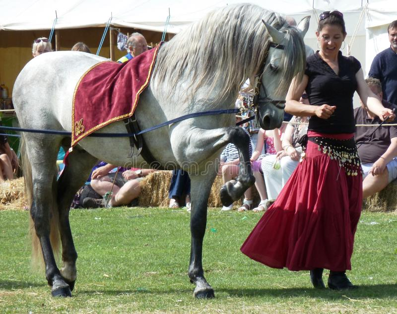 Andalusian horse and trainer at show stock photos