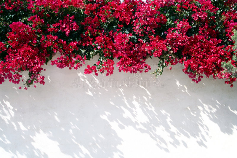 Spanish wall With flowers royalty free stock images