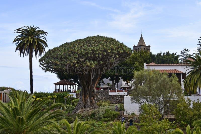 Spanje, Canarische Eilanden, Tenerife, Icod de los Vinos royalty-vrije stock afbeeldingen