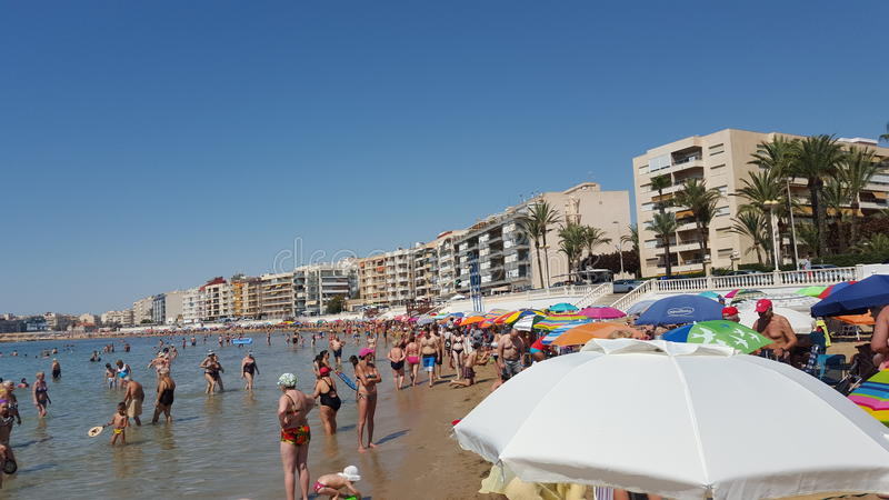 Spanje Torrevieja stock fotografie