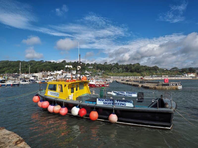 Spanjorögonlll - Lyme Regis arkivfoton