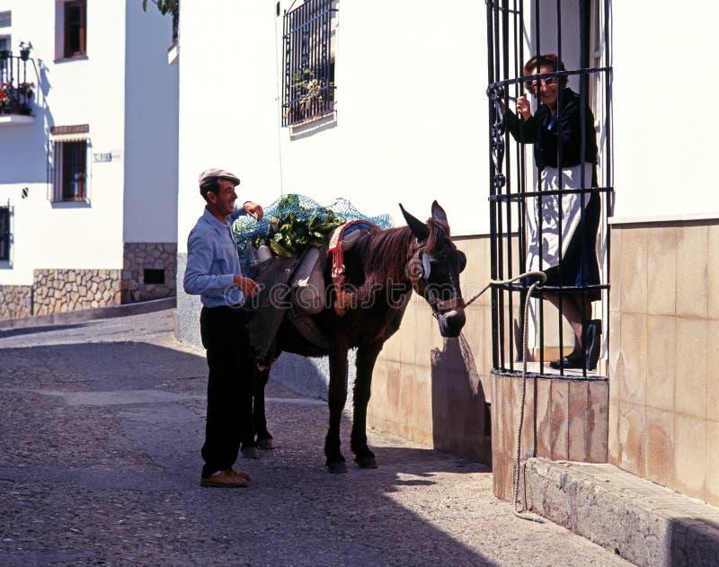 Spanjorpar och åsna, Jimena de la Frontera royaltyfria bilder