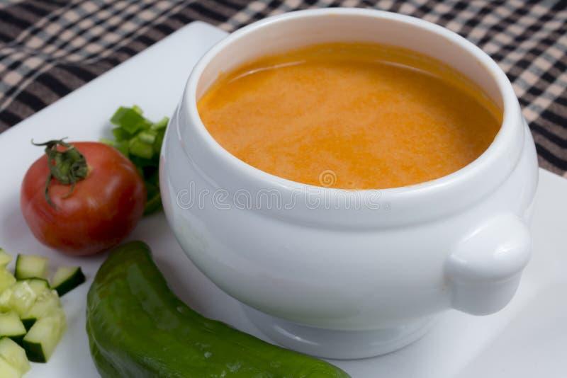 Spansk gazpacho royaltyfria foton