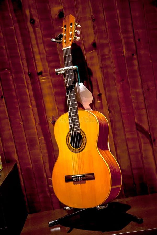 Spansk gitarr royaltyfri fotografi