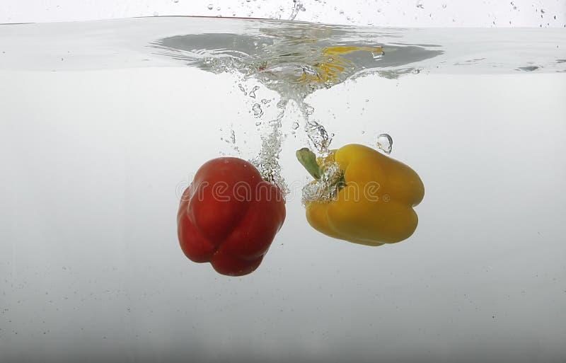 Spansk peppar i vatten arkivbild