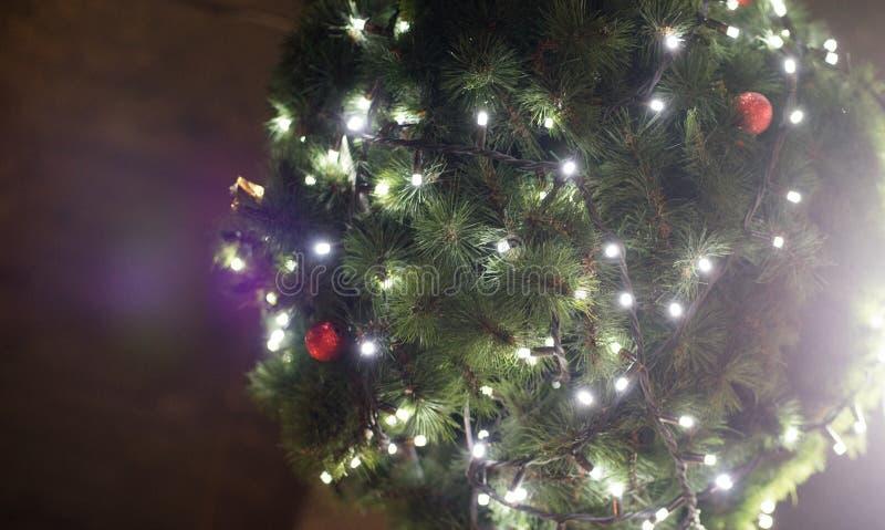 Spar en Kerstmisjuwelen op een houten achtergrond Hoogste mening, exemplaarruimte De achtergrond van het voedsel toning stock fotografie