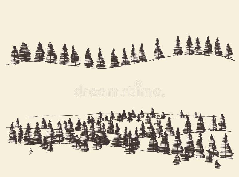 Spar Forest Contours Engraving in Bergen royalty-vrije illustratie