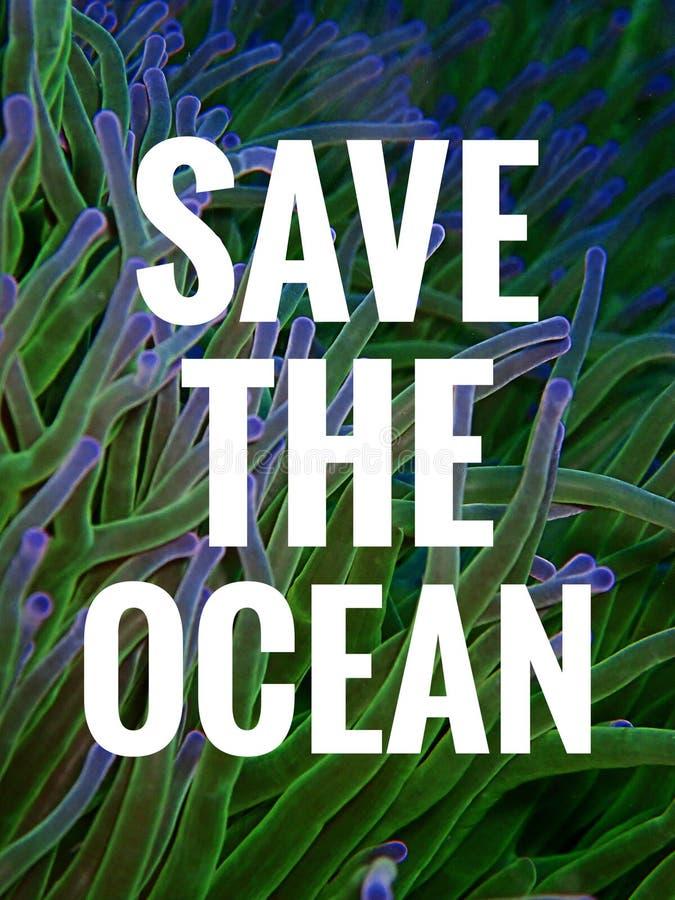 spara havet arkivbild