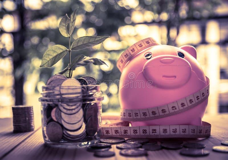Sparande mynt för investeringbegreppsaffär och finans arkivbilder