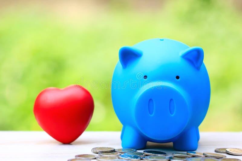 Sparande pengar för vän eller familj och att förbereda sig i det framtida begreppet, blå spargris med röd hjärta på naturl royaltyfri foto