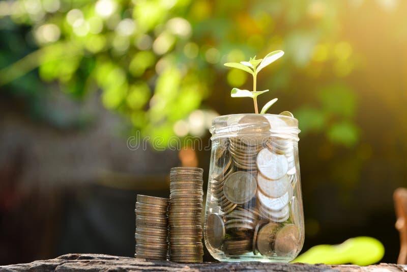 Sparen geld met stapelmuntstuk voor het kweken van uw zaken en installatieu royalty-vrije stock foto
