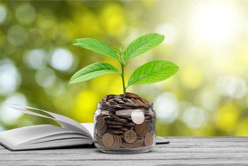 Sparen geldconcept stock afbeelding