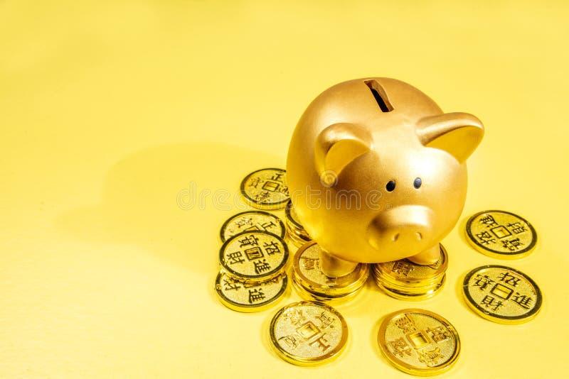 Spargris och guld- mynt fotografering för bildbyråer