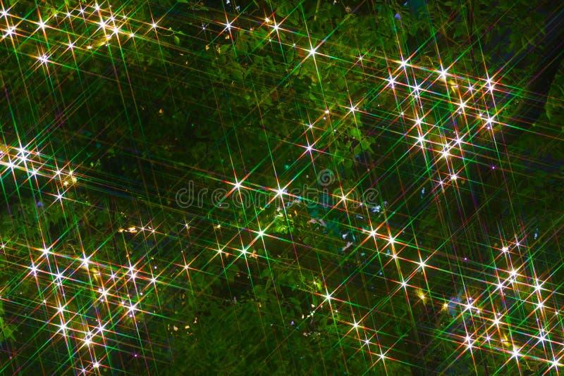 Sparkling tree. Shooting location : Chofu, Tokyo stock photo