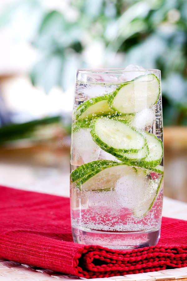 sparkling vatten för gurka royaltyfria bilder