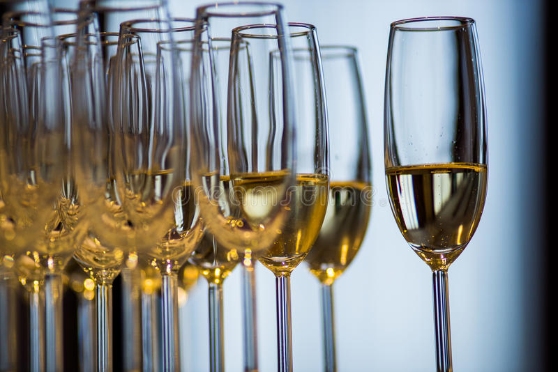 Sparkling whine glasses. Lots of sparkling whine glasses filled ready to be served royalty free stock photography