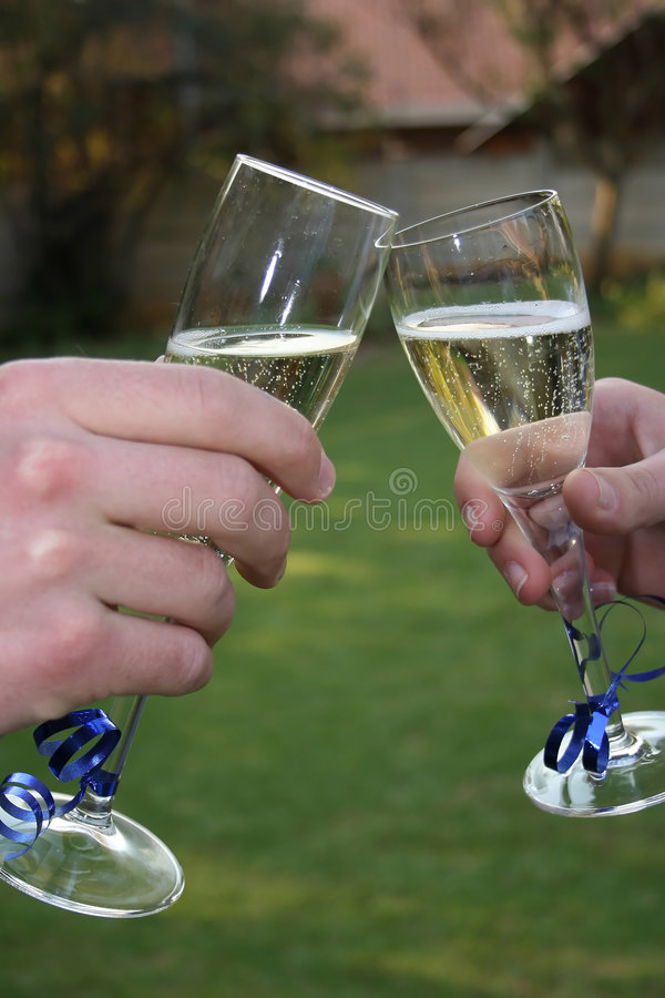 Download Sparkling Wine Stock Photo - Image: 1424060