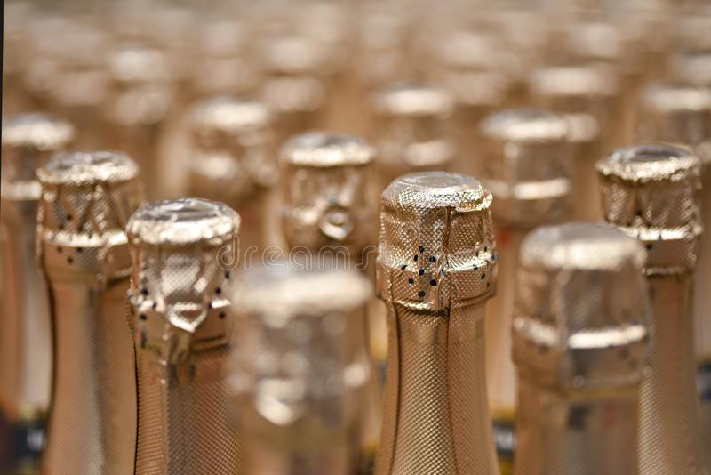 Sparkling wine bottles, winery, shop, holiday. Champagne store background celebration white alcohol closeup glass gold christmas drink beverage bar row set royalty free stock photo