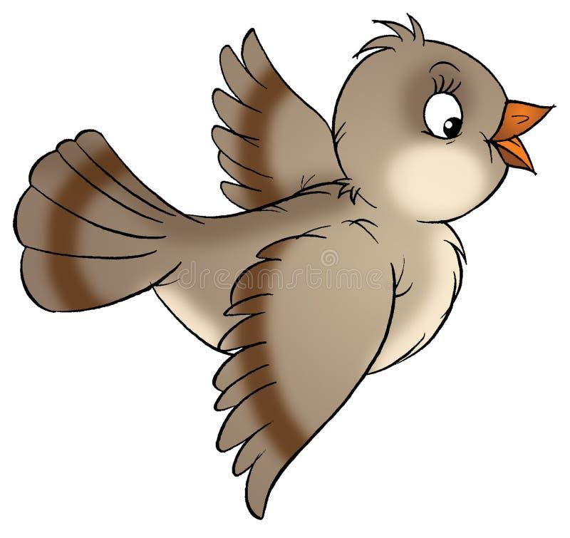 sparrow ilustracja wektor