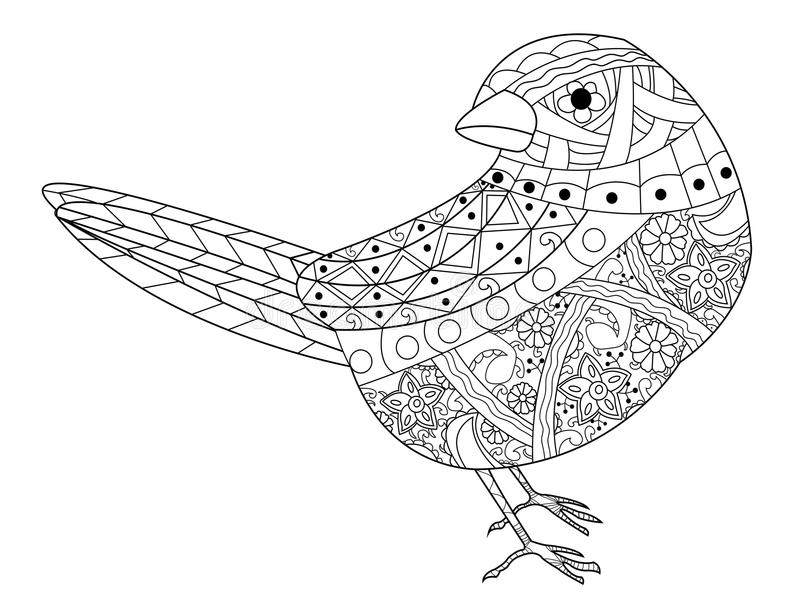 Download Sparrow Coloring Book Vector For Adults Stock