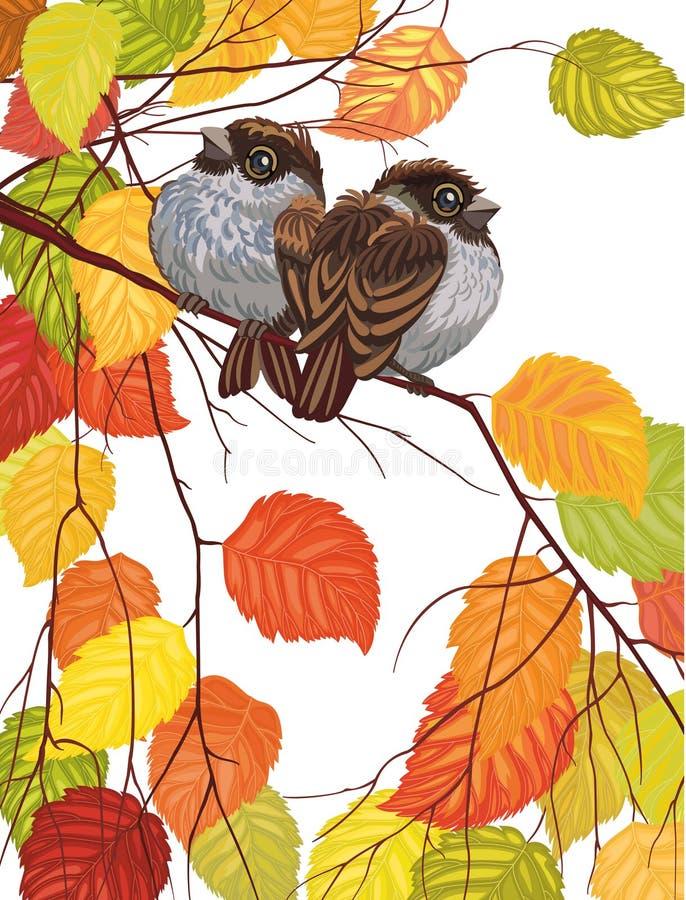 Sparrows två
