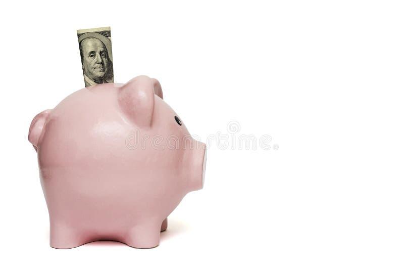 Sparschwein mit hundert Dollarschein stockbilder