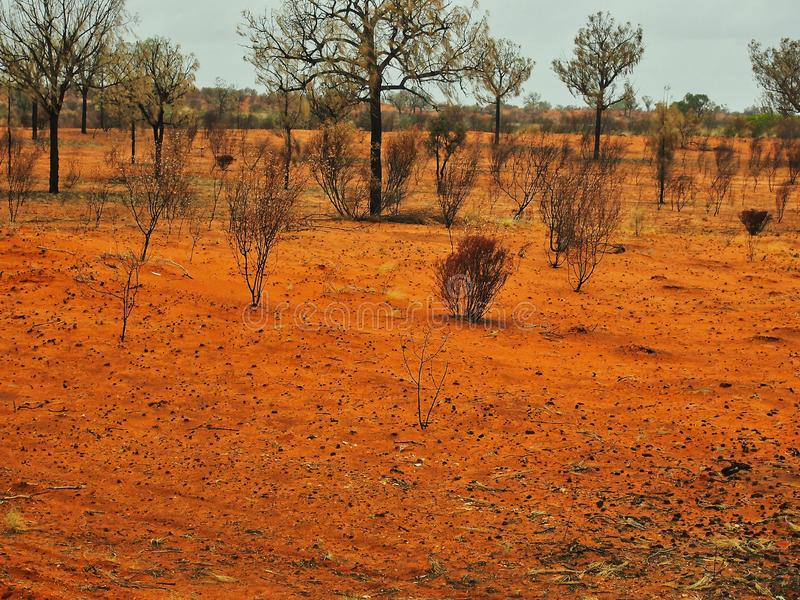 Sparse Red Centre Landscape, Northern Territory, Australia. Sparse Red Centre landscape in central Australia, muted colours in late afternoon rain, view from bus stock photos