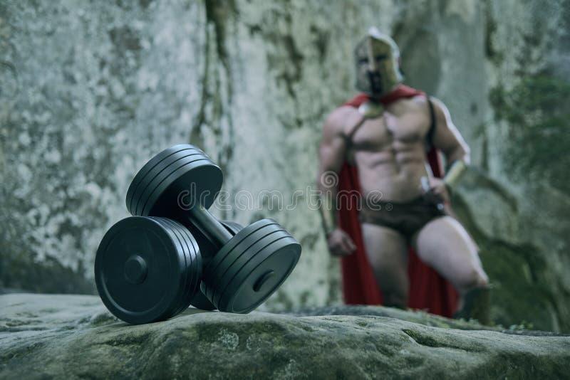 Spartaanse strijder in het hout royalty-vrije stock afbeelding