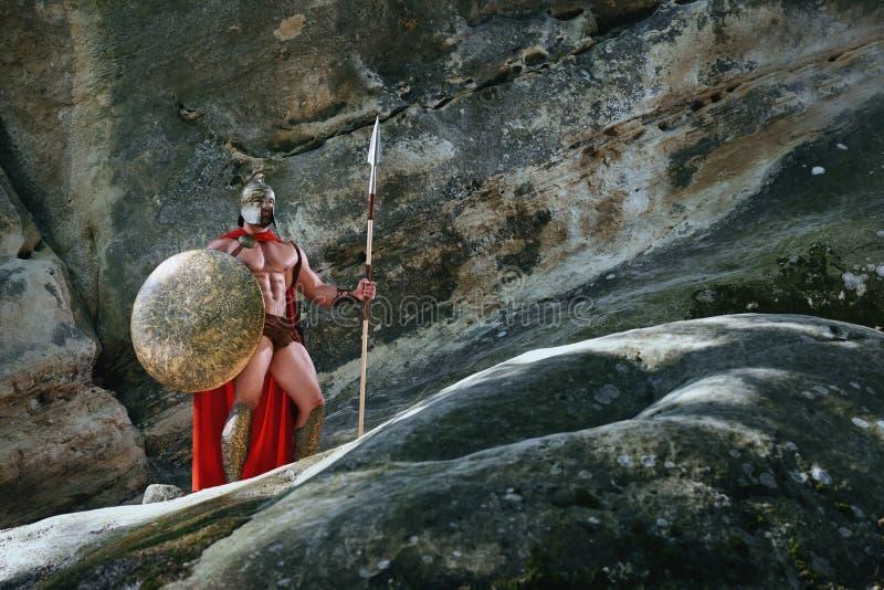 Spartaanse strijder in het hout stock fotografie