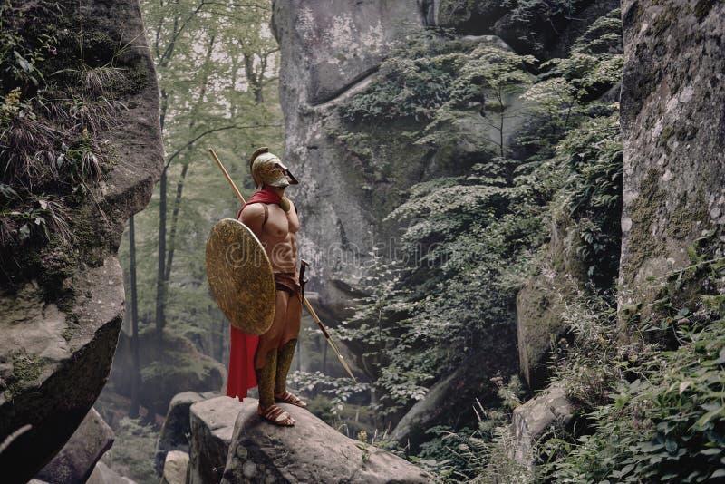 Spartaanse strijder in het hout stock foto