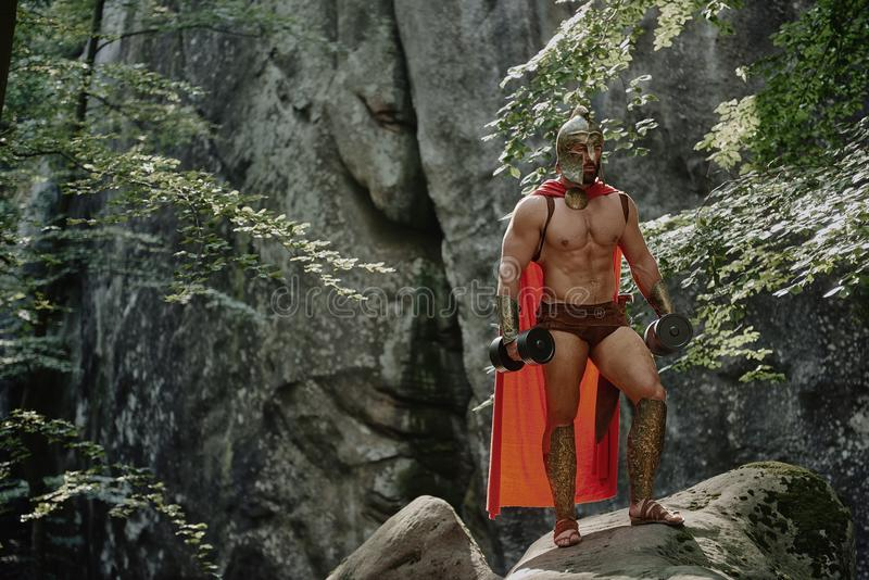 Spartaanse strijder in het hout royalty-vrije stock afbeeldingen