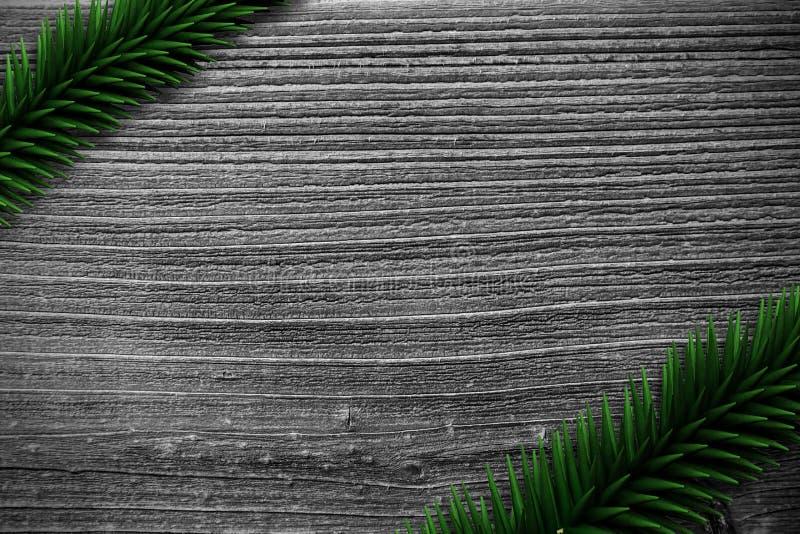 Spartakken op houten planken vector illustratie