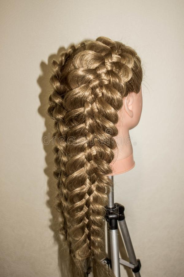 Spatial braids of 5 strands. On the training mannequin with hair royalty free stock images