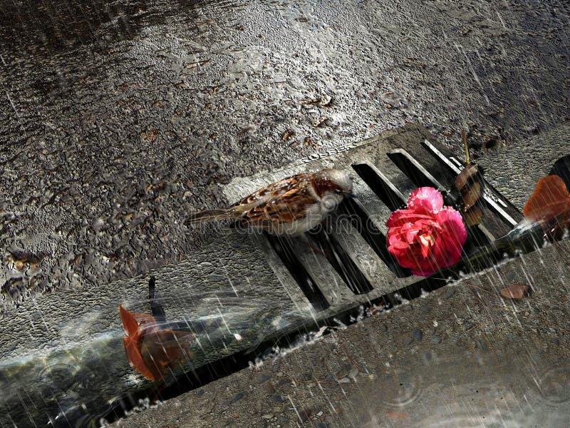 Spatz und stieg unter Regen stock abbildung