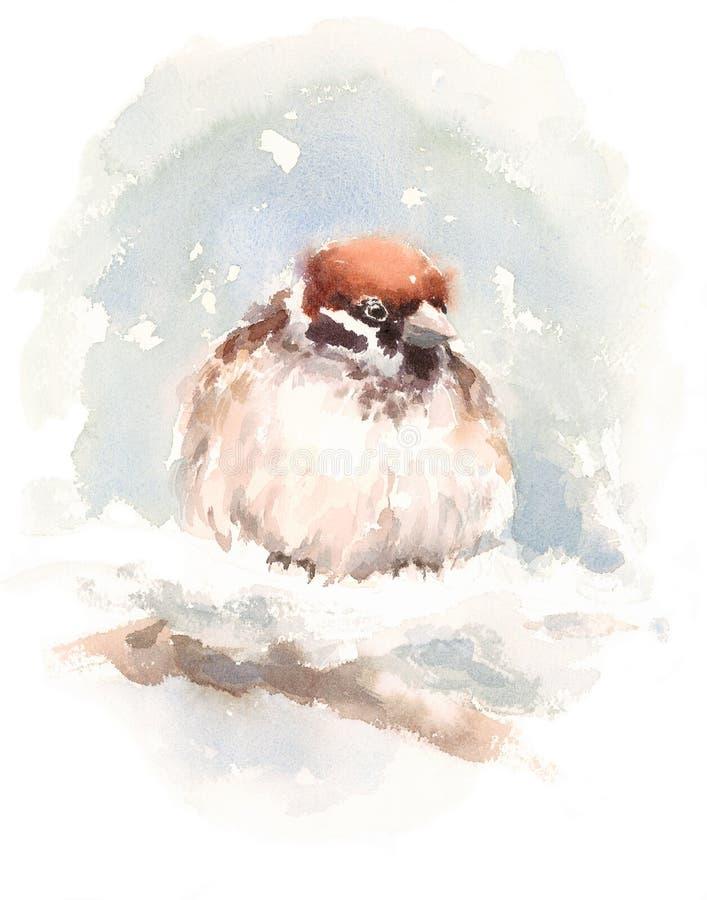 Spatzen-Vogel-Aquarell-Illustrations-Hand gezeichnet lizenzfreie abbildung