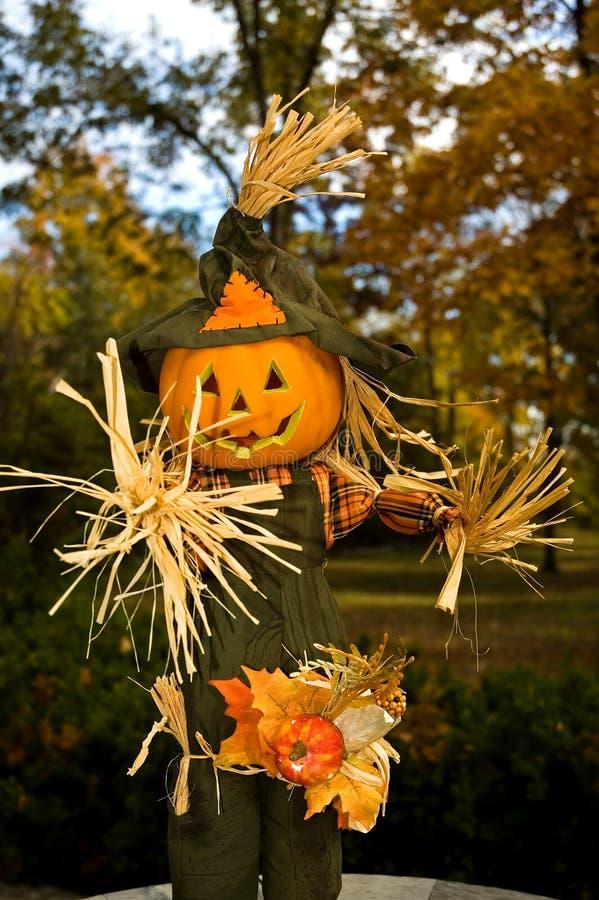 Spaventapasseri di Halloween Jack-o-lanten - 1 immagini stock libere da diritti
