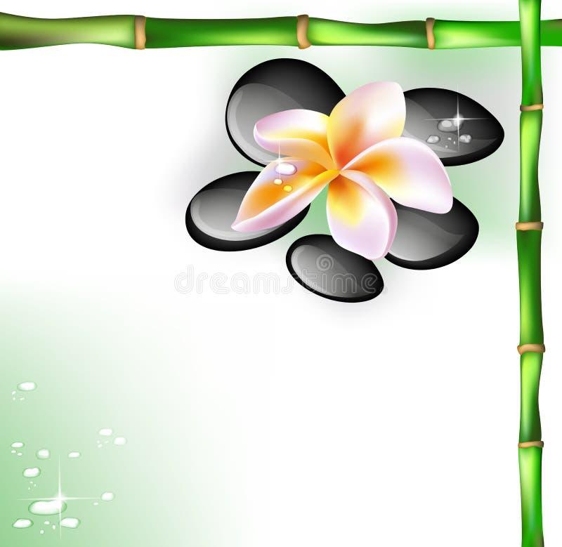 Spastenar och frangipaniblomma stock illustrationer
