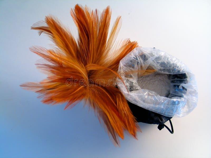 Spazzola della piuma con il sacchetto di polvere II immagine stock libera da diritti