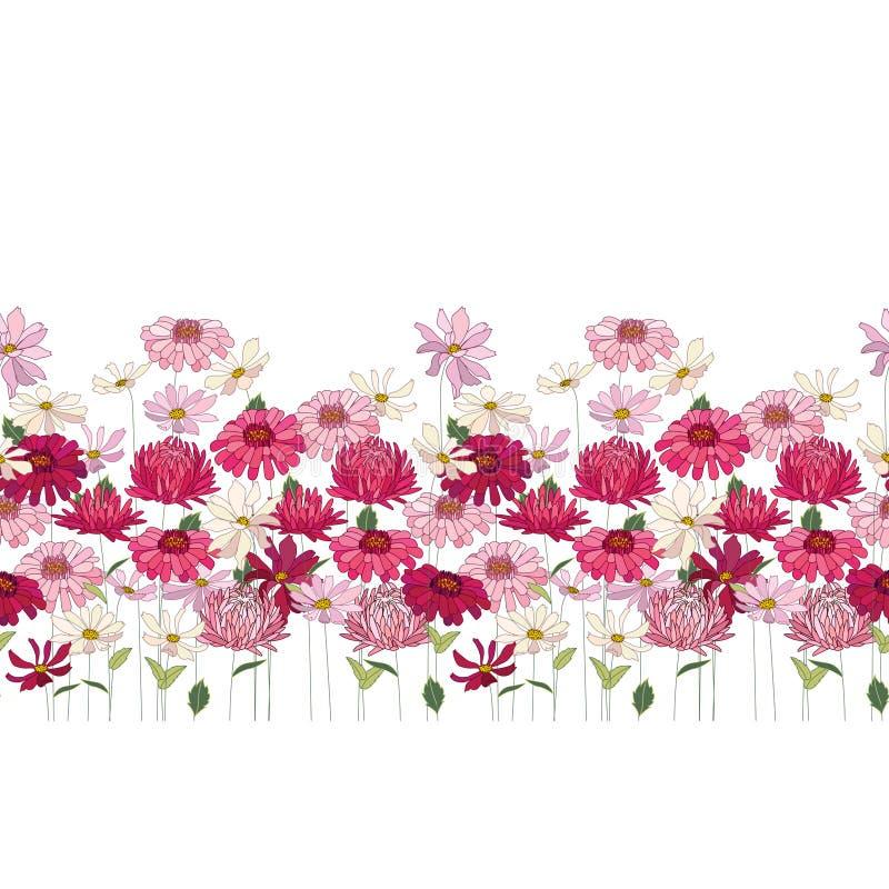Spazzola senza cuciture del modello con le erbe, la margherita, la gerbera ed altri fiori Struttura orizzontale senza fine illustrazione di stock