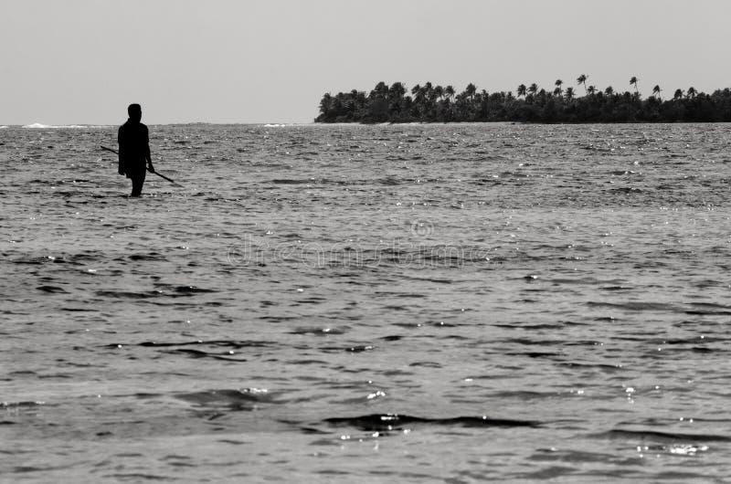 Spearfishing в Острова Кука лагуны Aitutaki стоковое изображение rf