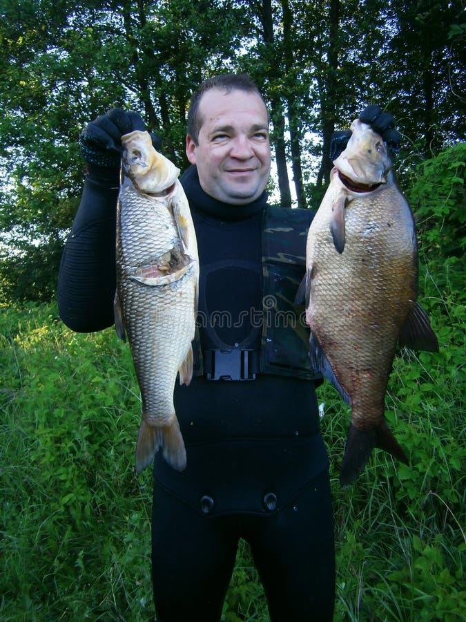 spearfishing zdjęcia royalty free