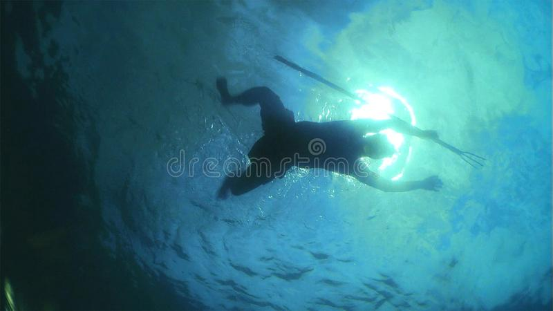 Spearfishing in the blue sea water royalty free stock image