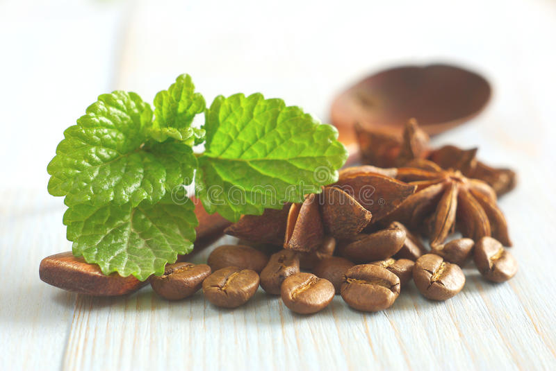 Spearmint wooden coffee beans anise retro stock photography
