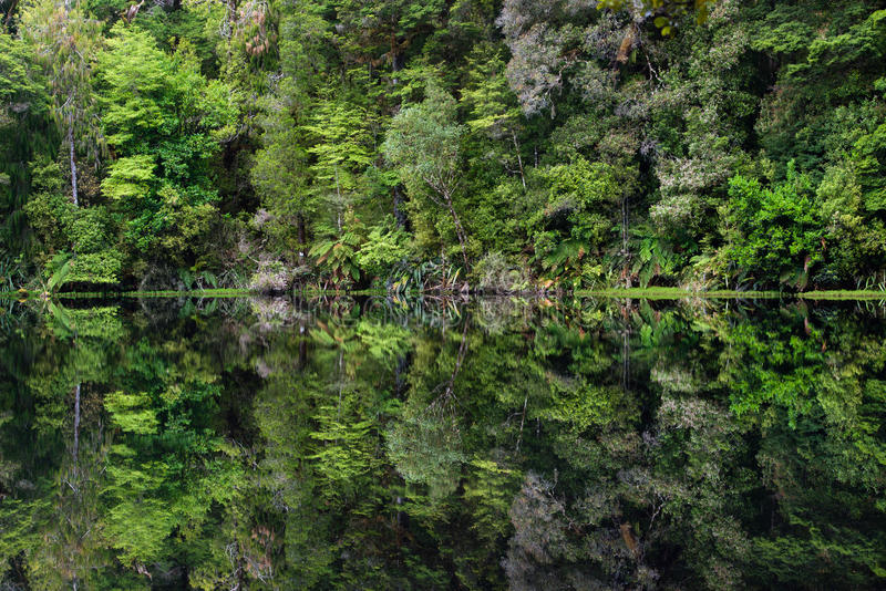 Specchio il Tarn, Nuova Zelanda fotografia stock libera da diritti