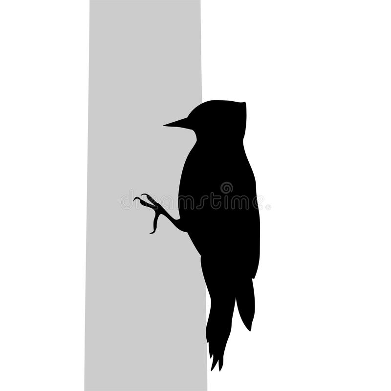Spechtvogelschwarz-Schattenbildtier stock abbildung